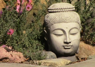 backyard buddha head photo by Johnna M. Gale