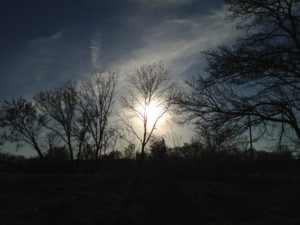 Sunset: Scenes from Montera