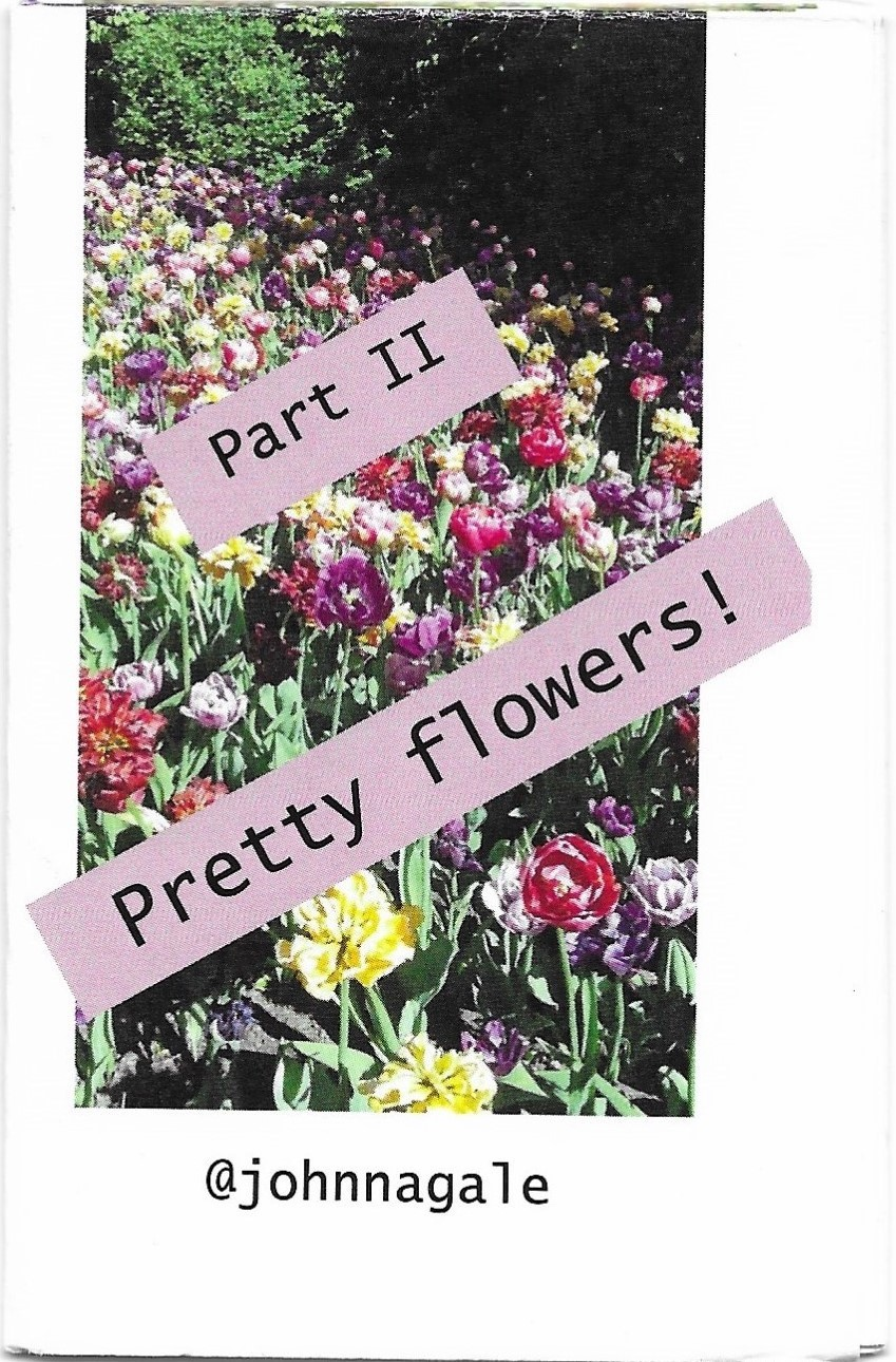 Pretty Flowers V.2, The second in the Pretty Flowers Micro Zine Collection. copyright Johnnie Xel 2021